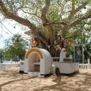 Le temple durant le River safari