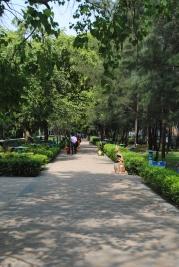 James Prinsep Ghat